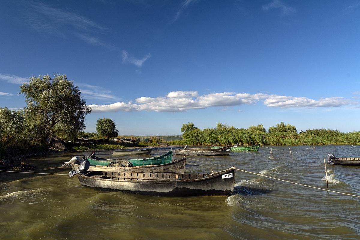 lotcile pescarilor ce asteapta la pontoane